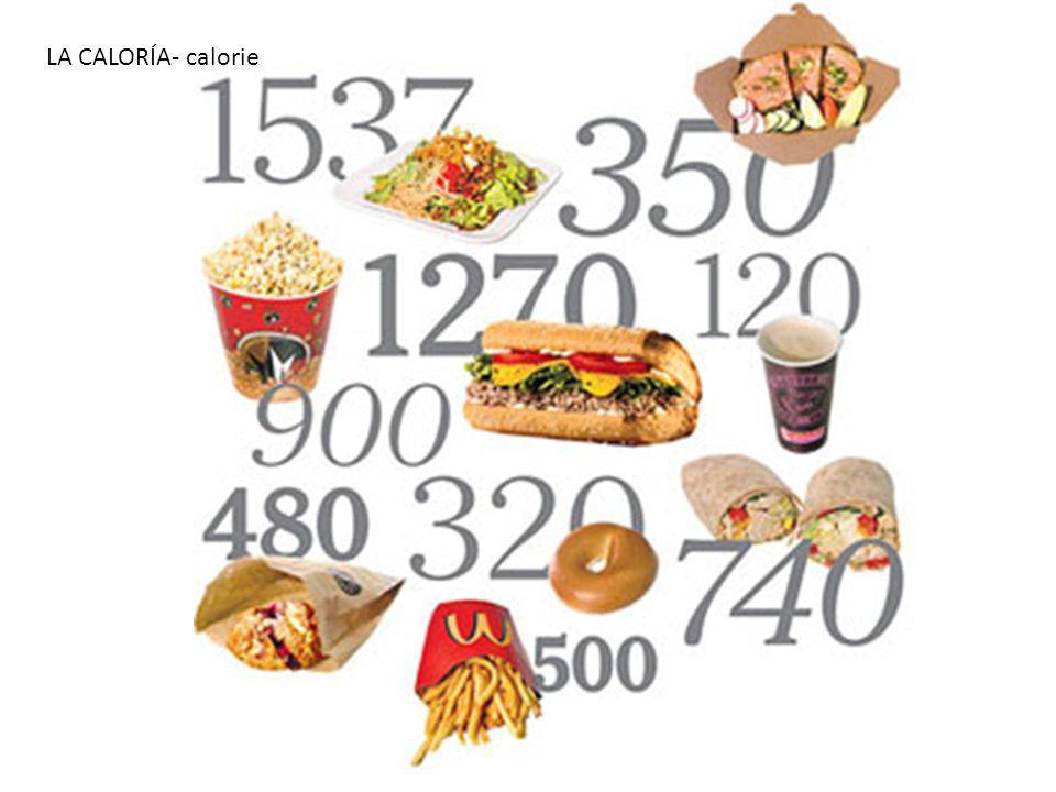 LA CALORÍA- calorie