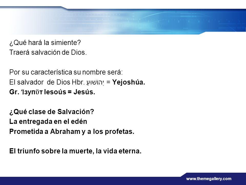 www.themegallery.com ¿Qué hará la simiente? Traerá salvación de Dios. Por su característica su nombre será: El salvador de Dios Hbr. יְהוֹשׁוּעַ = Yej