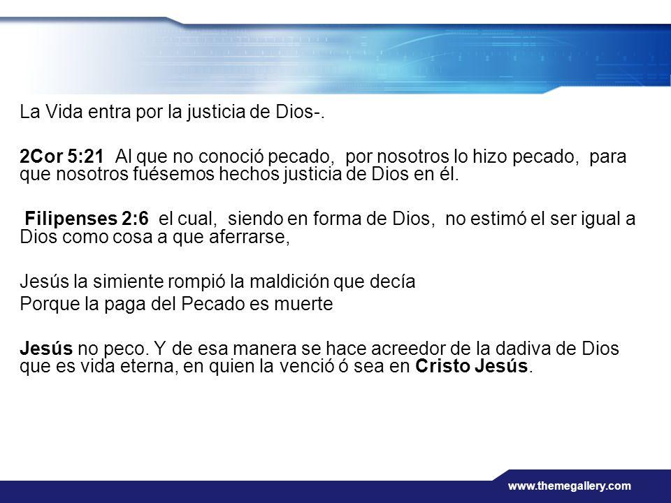 www.themegallery.com La Vida entra por la justicia de Dios-. 2Cor 5:21 Al que no conoció pecado, por nosotros lo hizo pecado, para que nosotros fuésem