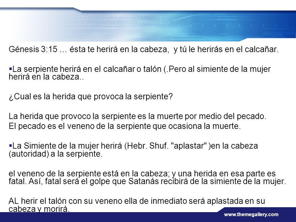 www.themegallery.com Génesis 3:15 … ésta te herirá en la cabeza, y tú le herirás en el calcañar. La serpiente herirá en el calcañar o talón (.Pero al