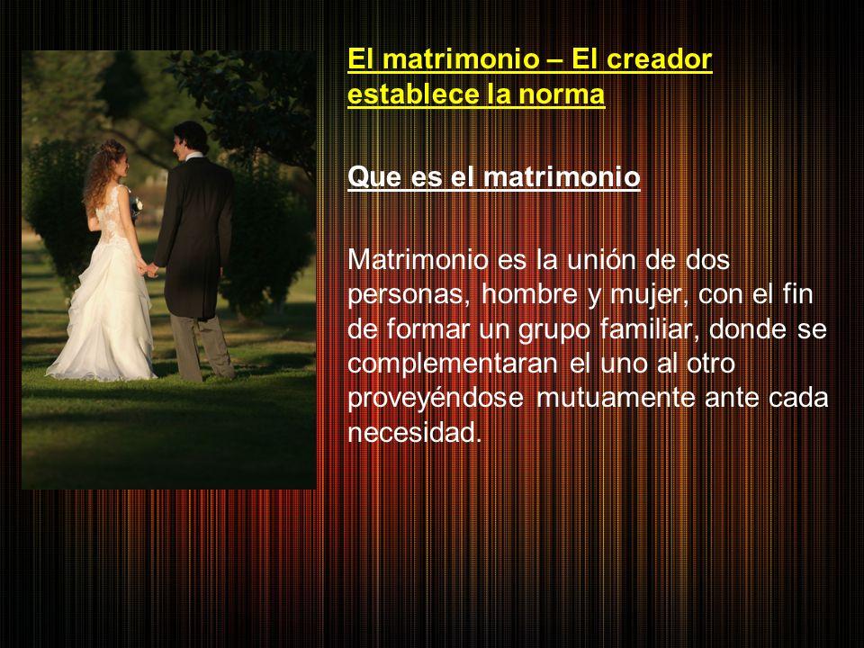 El matrimonio – El creador establece la norma Que es el matrimonio Matrimonio es la unión de dos personas, hombre y mujer, con el fin de formar un grupo familiar, donde se complementaran el uno al otro proveyéndose mutuamente ante cada necesidad.