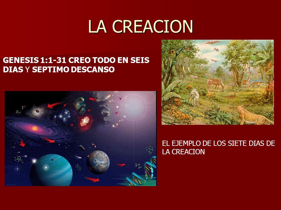 LA CREACION GENESIS 1:1-31 CREO TODO EN SEIS DIAS Y SEPTIMO DESCANSO EL EJEMPLO DE LOS SIETE DIAS DE LA CREACION