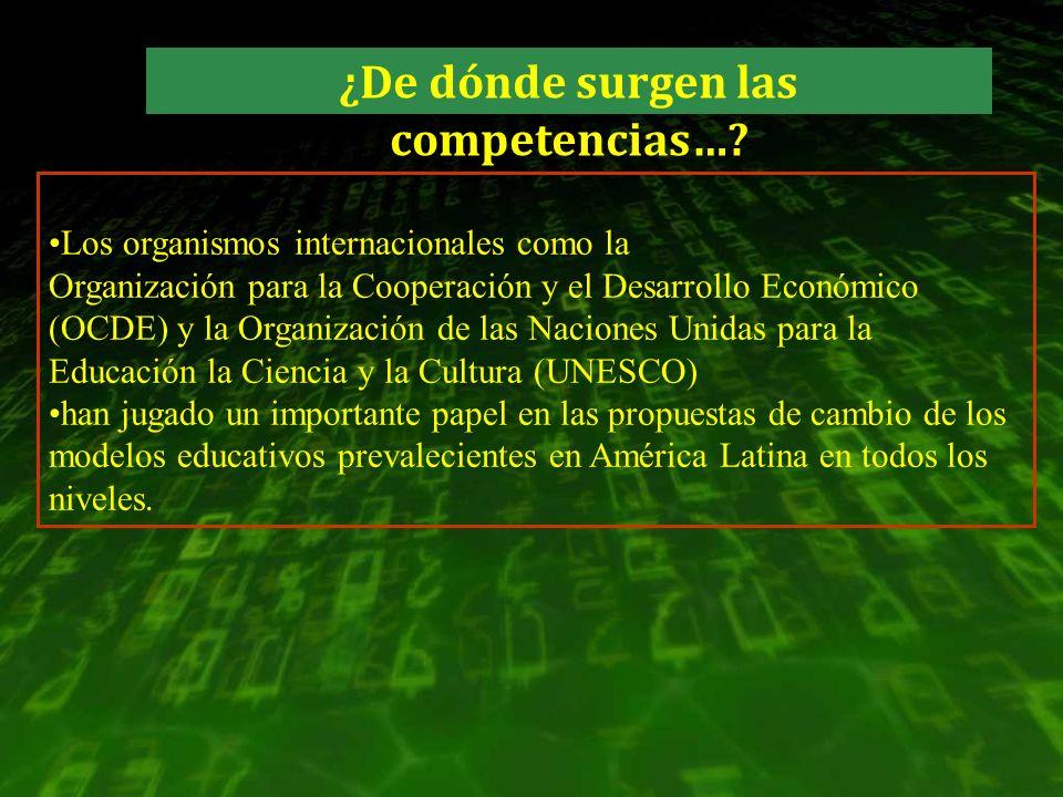 Los organismos internacionales como la Organización para la Cooperación y el Desarrollo Económico (OCDE) y la Organización de las Naciones Unidas para