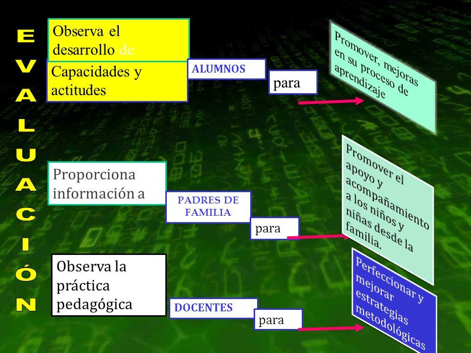 Capacidades y actitudes Observa el desarrollo de ALUMNOS para Proporciona información a Observa la práctica pedagógica DOCENTES PADRES DE FAMILIA para
