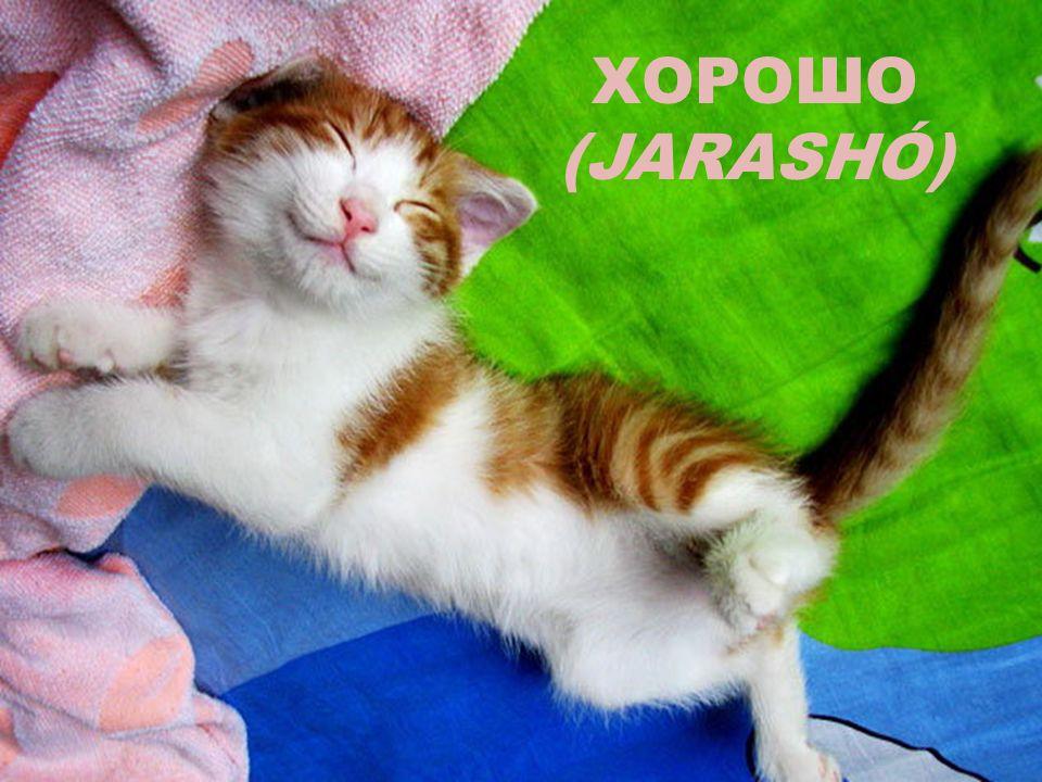 ХОРОШО (JARASHÓ)