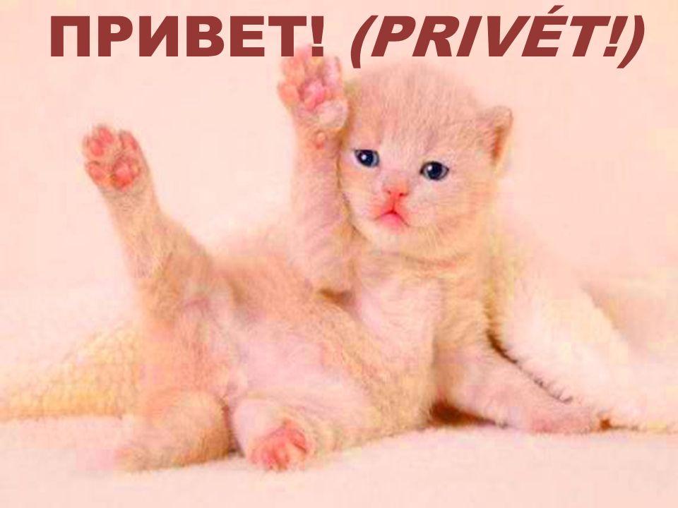 ПРИВЕТ! (PRIVÉT!)