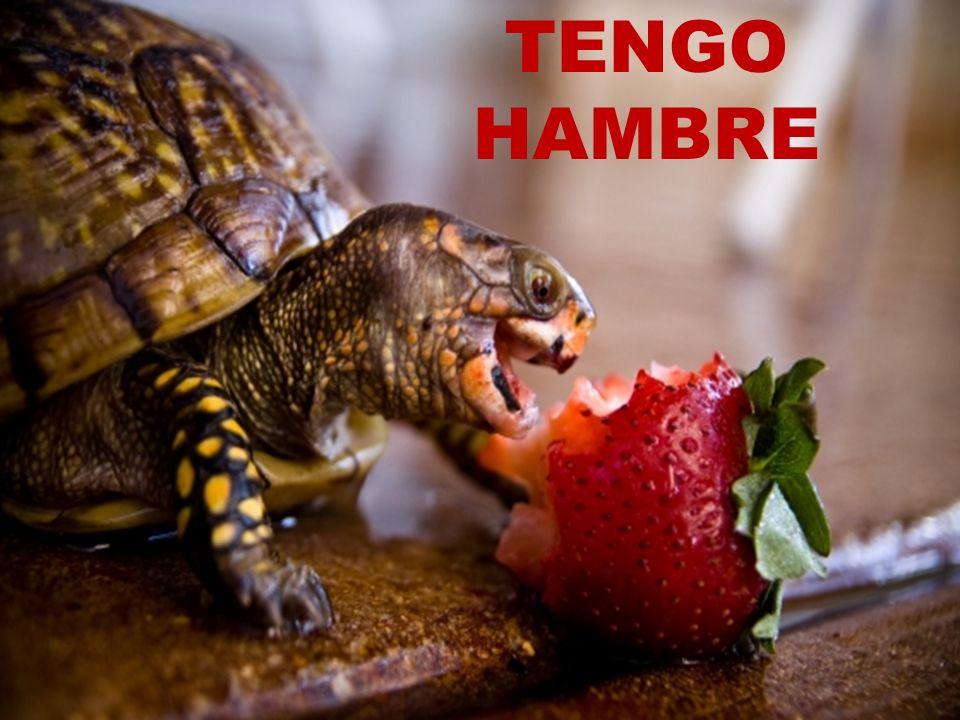 TENGO HAMBRE