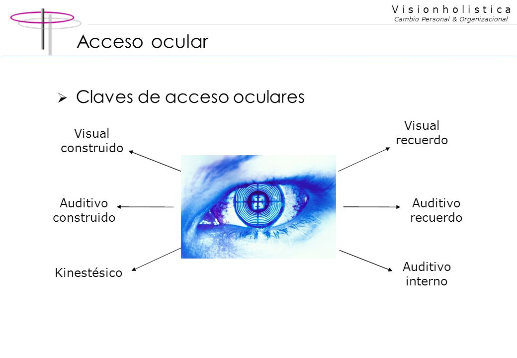 V i s i o n h o l i s t i c a Cambio Personal & Organizacional Los sentidos Persona Visual piensa varias cosas al mismo tiempo en imágenes que represe