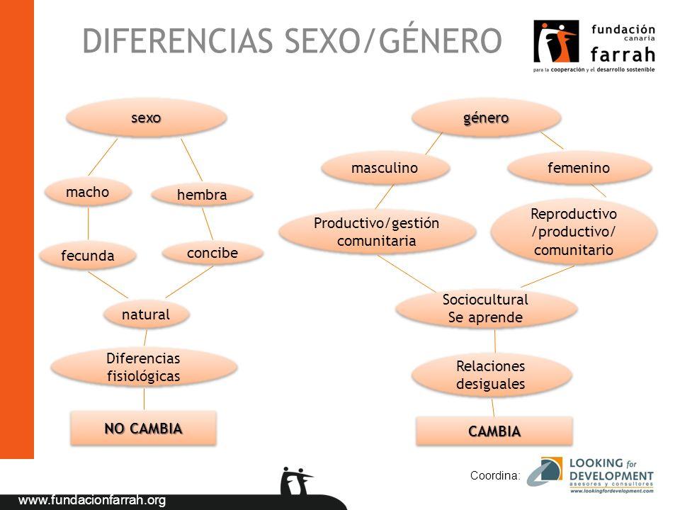 www.fundacionfarrah.org DIFERENCIAS SEXO/GÉNERO Coordina: sexosexogénerogénero macho hembra fecunda concibe natural Diferencias fisiológicas femenino
