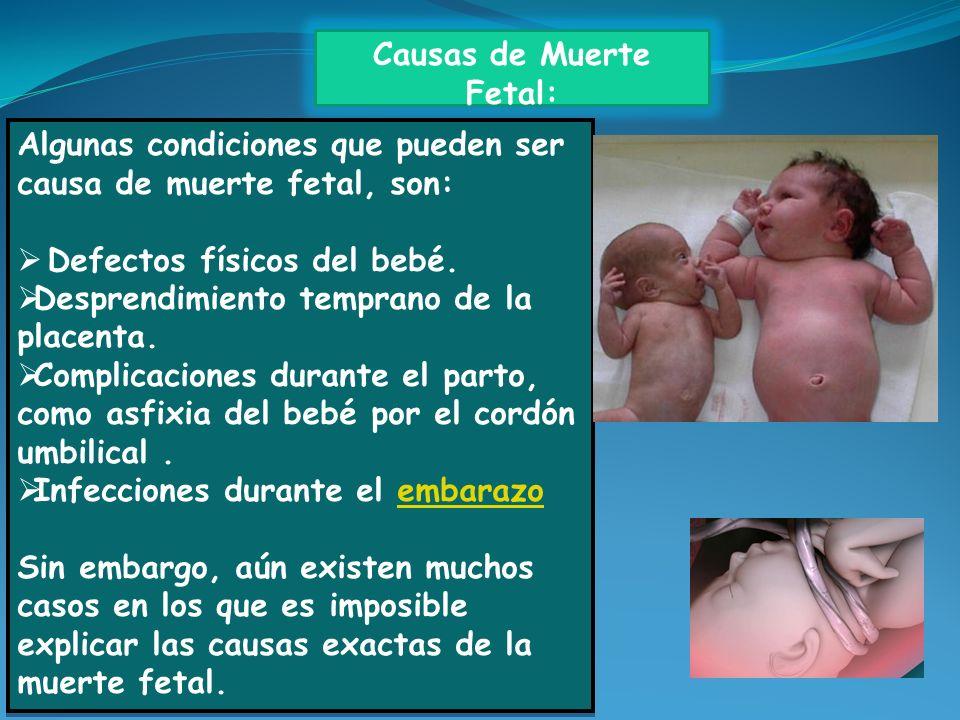 Causas de Muerte Fetal: Algunas condiciones que pueden ser causa de muerte fetal, son: Defectos físicos del bebé. Desprendimiento temprano de la place
