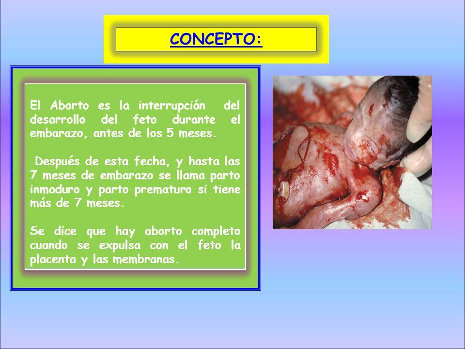 El Aborto es la interrupción del desarrollo del feto durante el embarazo, antes de los 5 meses. Después de esta fecha, y hasta las 7 meses de embarazo