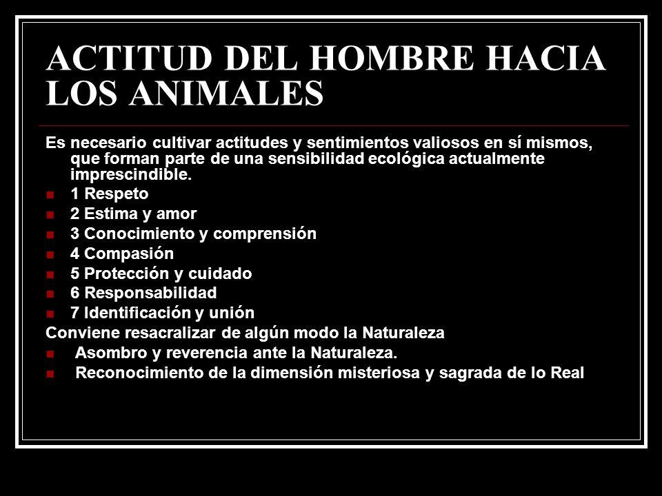 ACTITUD DEL HOMBRE HACIA LOS ANIMALES Es necesario cultivar actitudes y sentimientos valiosos en sí mismos, que forman parte de una sensibilidad ecoló