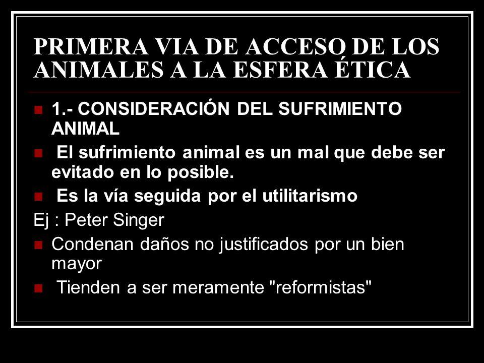 PRIMERA VIA DE ACCESO DE LOS ANIMALES A LA ESFERA ÉTICA 1.- CONSIDERACIÓN DEL SUFRIMIENTO ANIMAL El sufrimiento animal es un mal que debe ser evitado