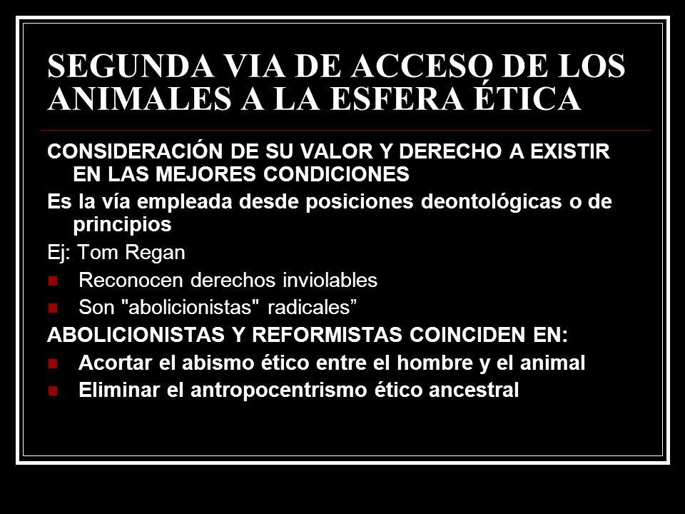 SEGUNDA VIA DE ACCESO DE LOS ANIMALES A LA ESFERA ÉTICA CONSIDERACIÓN DE SU VALOR Y DERECHO A EXISTIR EN LAS MEJORES CONDICIONES Es la vía empleada de