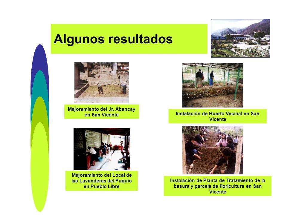 Instalación de Planta de Tratamiento de la basura y parcela de floricultura en San Vicente Instalación de Huerto Vecinal en San Vicente Mejoramiento d