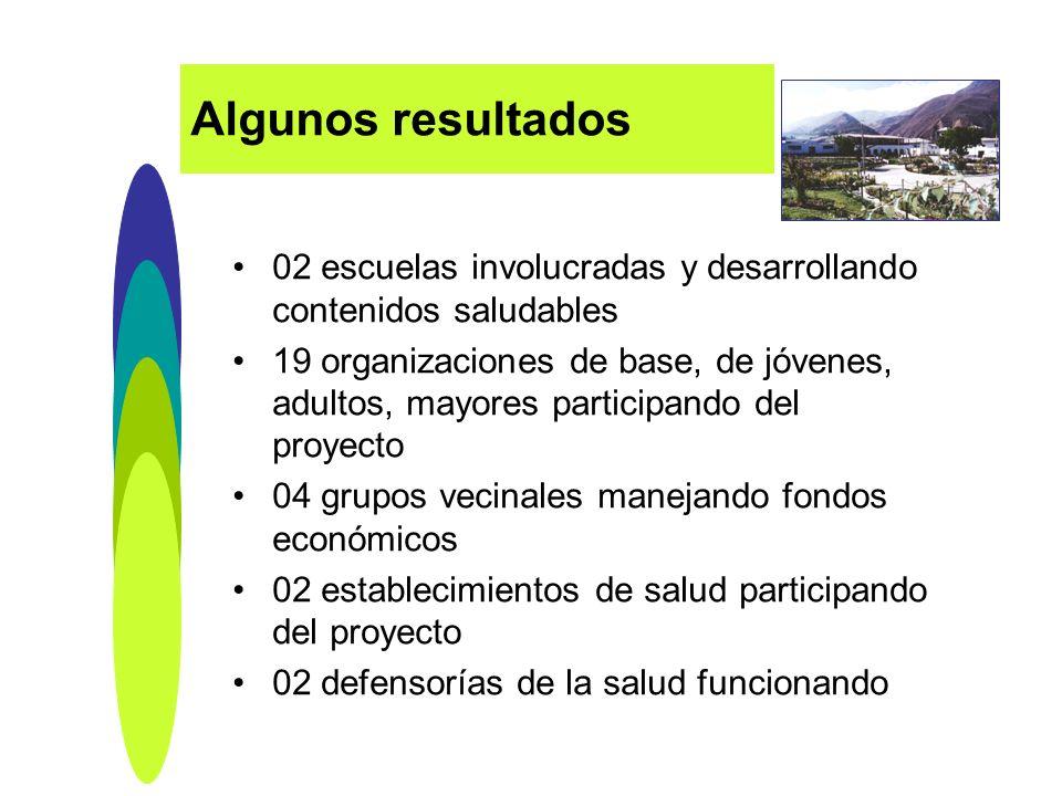 02 escuelas involucradas y desarrollando contenidos saludables 19 organizaciones de base, de jóvenes, adultos, mayores participando del proyecto 04 gr