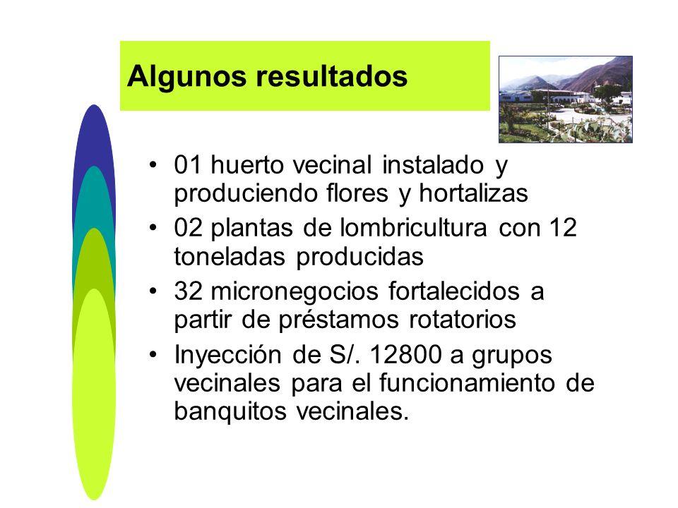 01 huerto vecinal instalado y produciendo flores y hortalizas 02 plantas de lombricultura con 12 toneladas producidas 32 micronegocios fortalecidos a