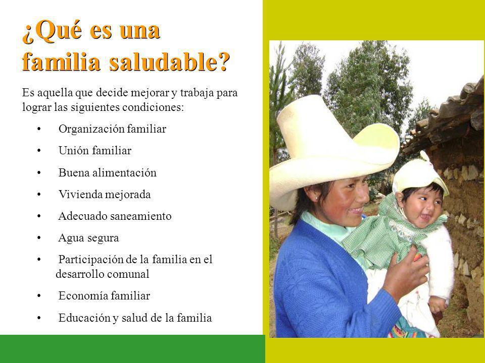 ¿Qué es una familia saludable? Es aquella que decide mejorar y trabaja para lograr las siguientes condiciones: Organización familiar Unión familiar Bu