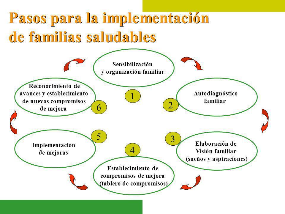 Pasos para la implementación de familias saludables Sensibilización y organización familiar Autodiagnóstico familiar Establecimiento de compromisos de