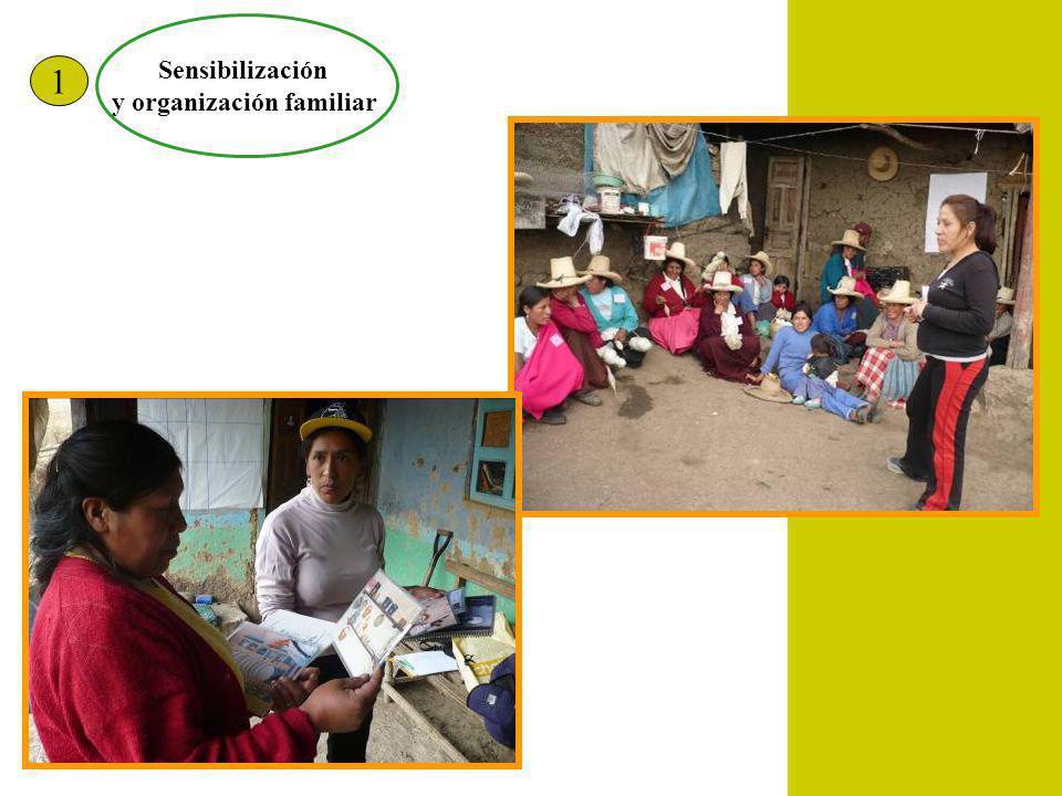 Sensibilización y organización familiar 1