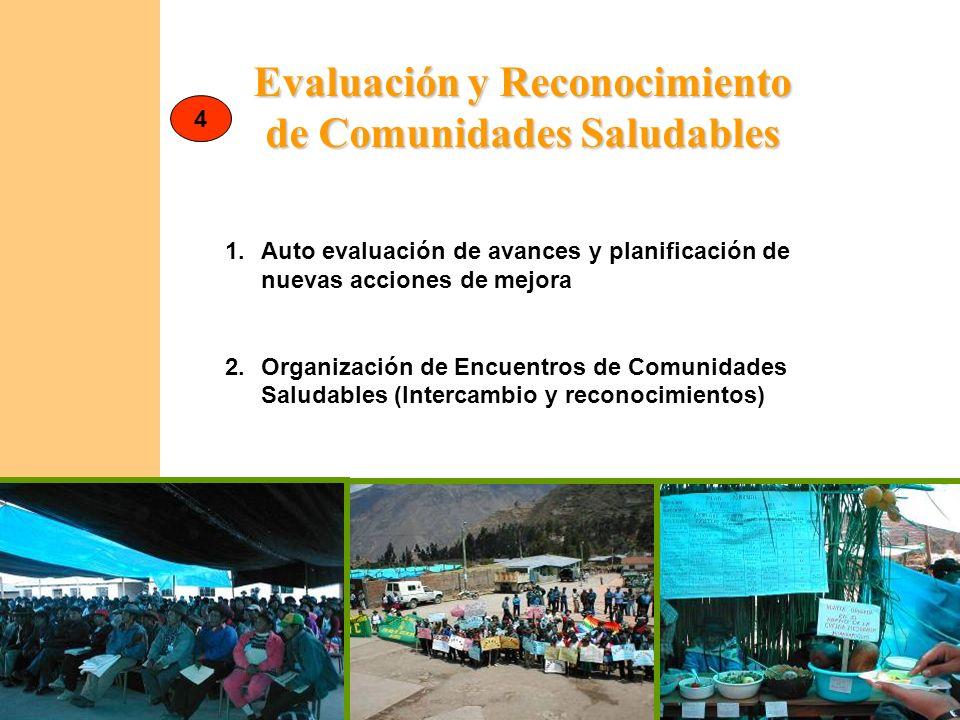 Evaluación y Reconocimiento de Comunidades Saludables 1.Auto evaluación de avances y planificación de nuevas acciones de mejora 2.Organización de Encu