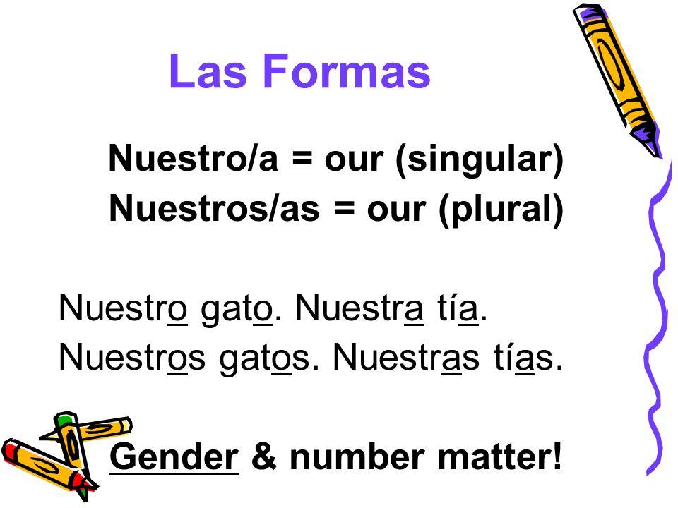 Las Formas Nuestro/a = our (singular) Nuestros/as = our (plural) Nuestro gato. Nuestra tía. Nuestros gatos. Nuestras tías. Gender & number matter!
