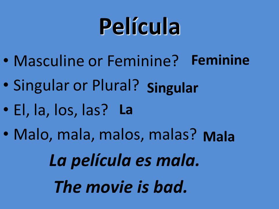 Película Masculine or Feminine? Singular or Plural? El, la, los, las? Malo, mala, malos, malas? La película es mala. The movie is bad. Feminine Singul