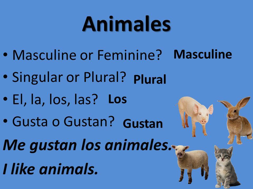 Animales Masculine or Feminine? Singular or Plural? El, la, los, las? Gusta o Gustan? Me gustan los animales. I like animals. Masculine Plural Los Gus