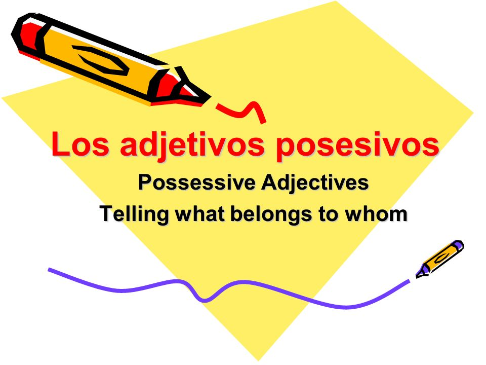 Los adjetivos posesivos Possessive Adjectives Telling what belongs to whom