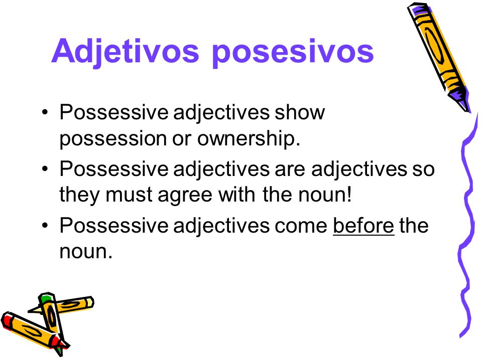 Adjetivos posesivos Possessive adjectives show possession or ownership. Possessive adjectives are adjectives so they must agree with the noun! Possess
