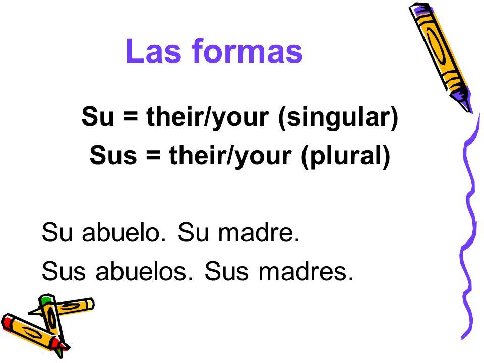 Las formas Su = their/your (singular) Sus = their/your (plural) Su abuelo. Su madre. Sus abuelos. Sus madres.