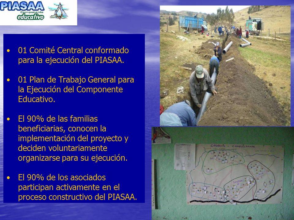 01 Comité Central conformado para la ejecución del PIASAA.