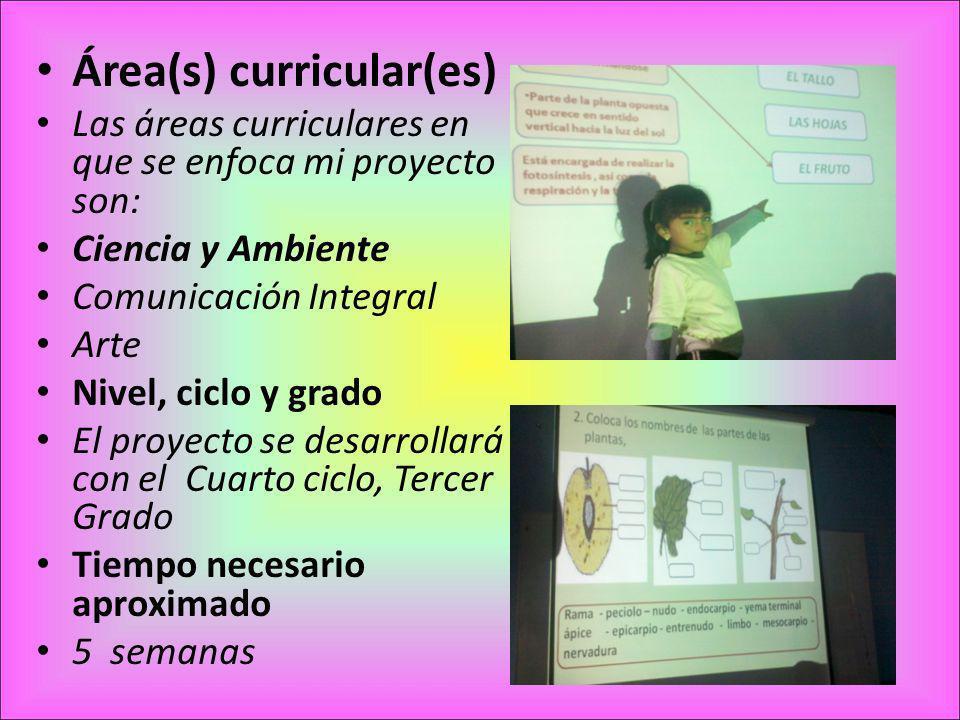 Área(s) curricular(es) Las áreas curriculares en que se enfoca mi proyecto son: Ciencia y Ambiente Comunicación Integral Arte Nivel, ciclo y grado El proyecto se desarrollará con el Cuarto ciclo, Tercer Grado Tiempo necesario aproximado 5 semanas