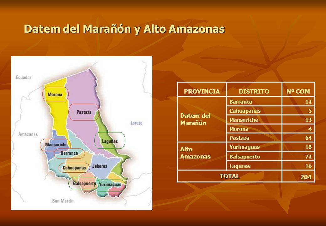 PROVINCIADISTRITONº COM Datem del Marañón Barranca12 Cahuapanas5 Manseriche13 Morona4 Pastaza64 Alto Amazonas Yurimaguas18 Balsapuerto72 Lagunas16 TOT