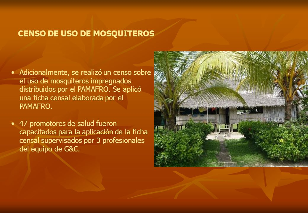 CENSO DE USO DE MOSQUITEROS Adicionalmente, se realizó un censo sobre el uso de mosquiteros impregnados distribuidos por el PAMAFRO. Se aplicó una fic