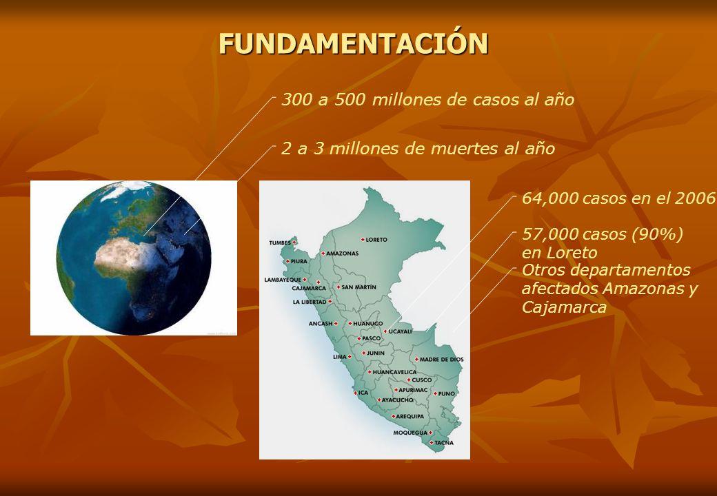 300 a 500 millones de casos al año 2 a 3 millones de muertes al añoFUNDAMENTACIÓN 64,000 casos en el 2006 57,000 casos (90%) en Loreto Otros departame