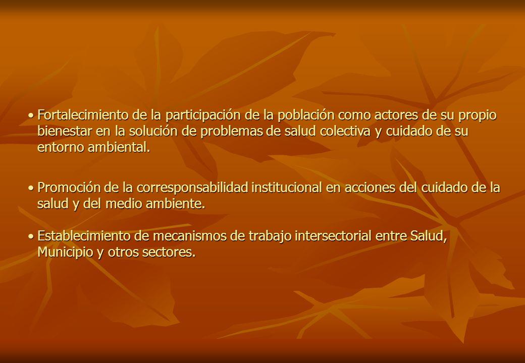3.LOS CAMPOS DE LA INTERVENCIÓN LOS PROYECTOS COMUNALES DE PREVENCIÓN Y CONTROL DE LA MALARIA CON UN ENFOQUE DE DESARROLLO.LOS PROYECTOS COMUNALES DE PREVENCIÓN Y CONTROL DE LA MALARIA CON UN ENFOQUE DE DESARROLLO.