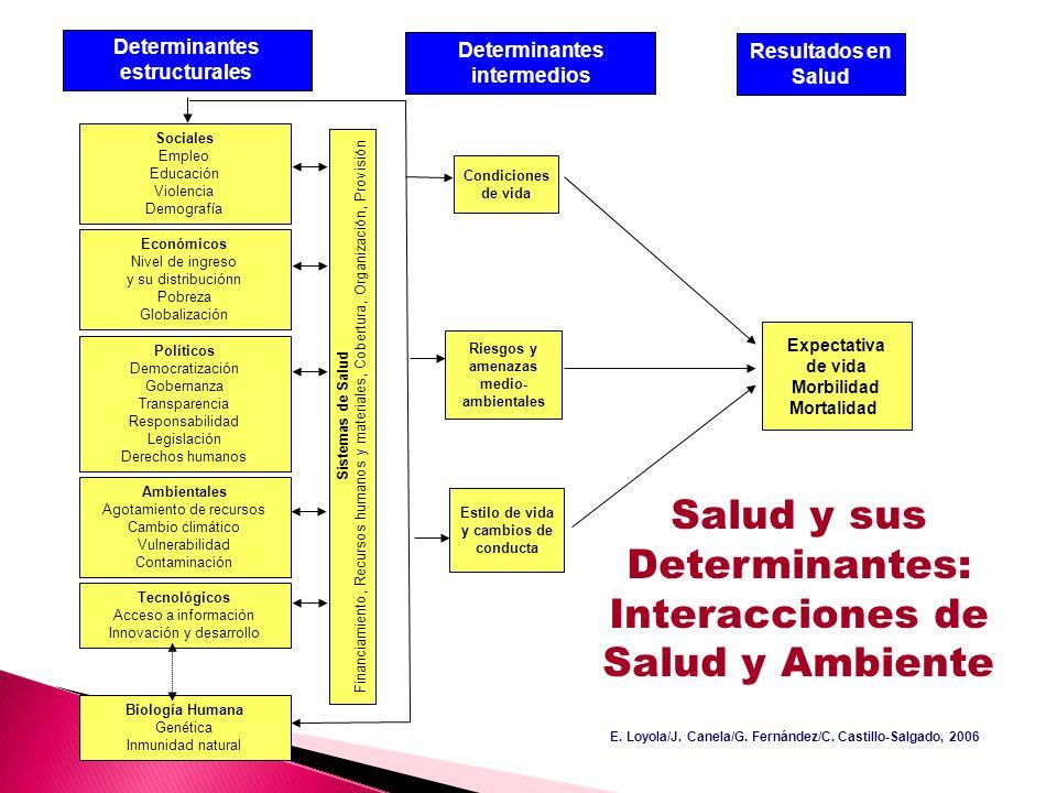 INACTIVIDAD FÍSICA INFILTRACIÓN GRASA HIPERCOLES TEROLEMIA ALTERACIÓN HORMONAL SOBRECARGA CARDIACA INFARTO HIPERTENSION DAÑO RENAL DAÑO RETINA ARTERIO