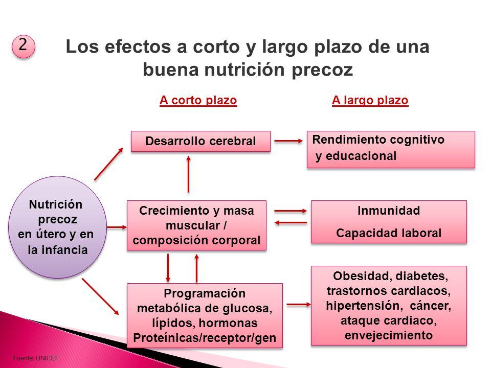 Mide condiciones e indicadores para prevenir la Desnutrición Infantil Niño Bien Nutrido Niño Bien Atendido Niño con Padres Informados Niño en Vivienda