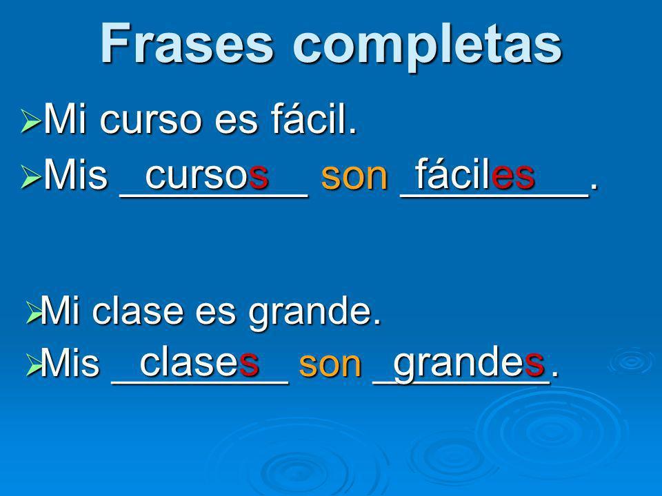 Frases completas Mi curso es fácil. Mi curso es fácil. Mis ________ son ________. Mis ________ son ________. Mi clase es grande. Mi clase es grande. M