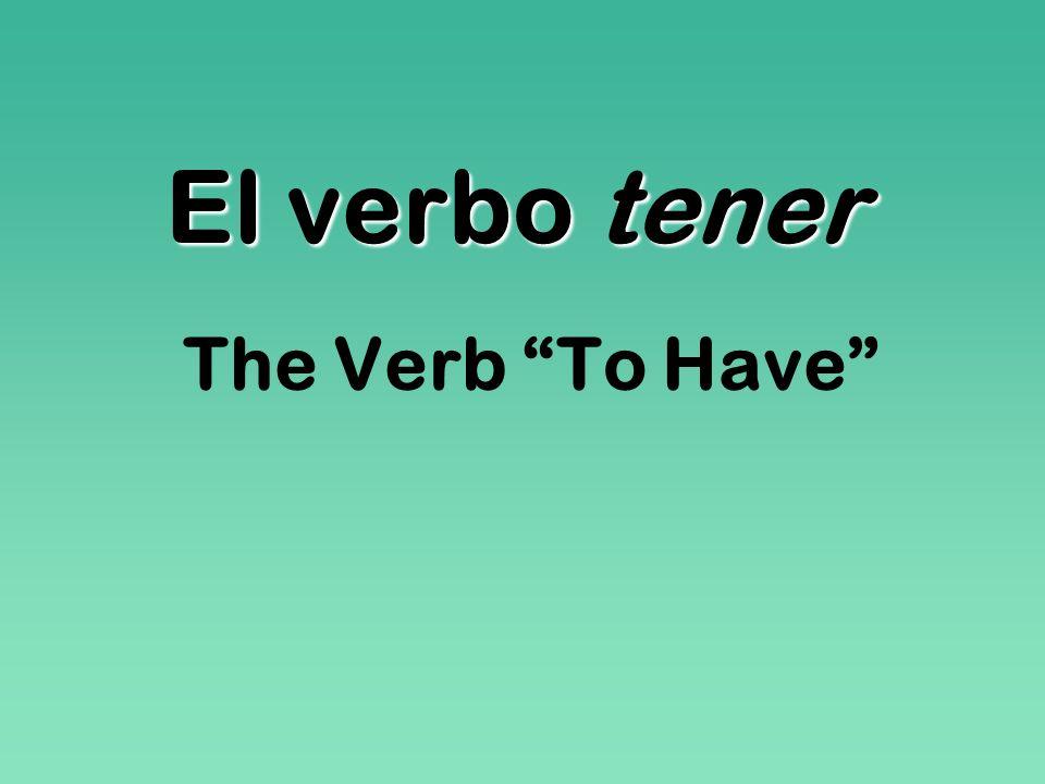 El verbo tener The Verb To Have