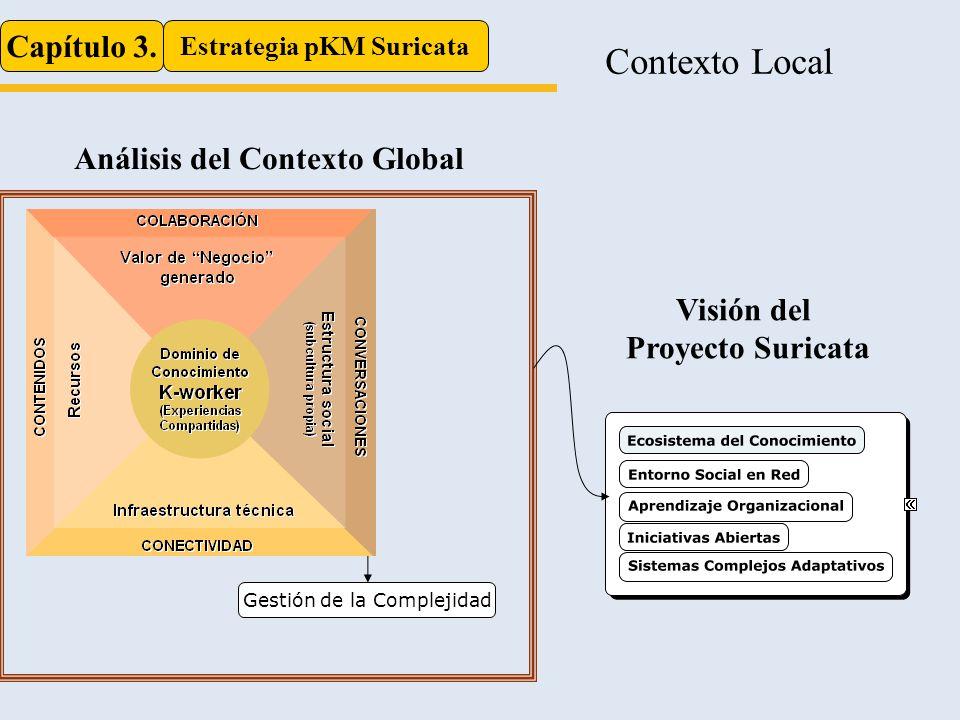 Contexto Local Capítulo 3. Estrategia pKM Suricata Sociedad en Red Tecnologías emergentes Gestión de la Complejidad Incremento de las Interacciones Ec