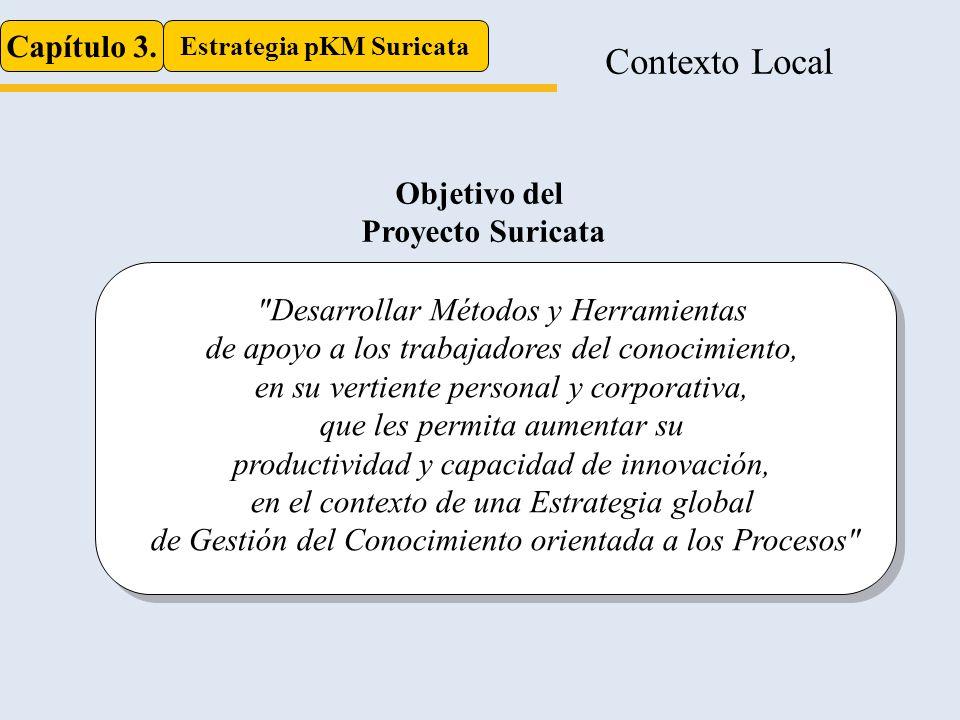 Contexto Local Capítulo 3. Estrategia pKM Suricata Objetivo del Proyecto Suricata