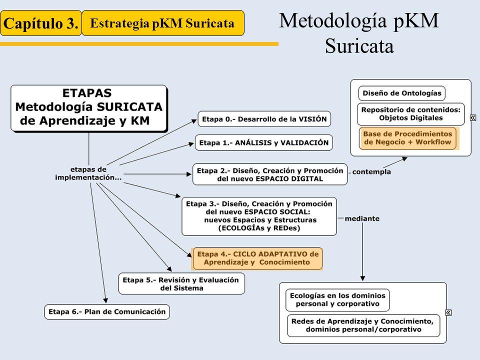Capítulo 3. Estrategia pKM Suricata Metodología pKM Suricata