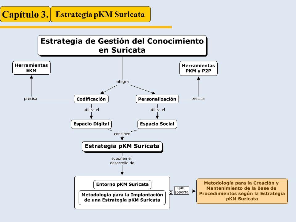 Capítulo 3. Estrategia pKM Suricata