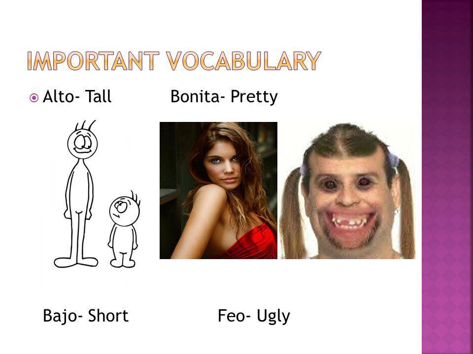 Alto- Tall Bonita- Pretty Bajo- ShortFeo- Ugly