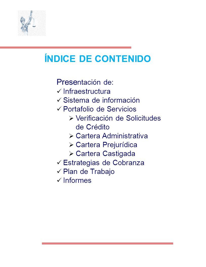 ÍNDICE DE CONTENIDO Prese ntación de: Infraestructura Sistema de información Portafolio de Servicios Verificación de Solicitudes de Crédito Cartera Ad