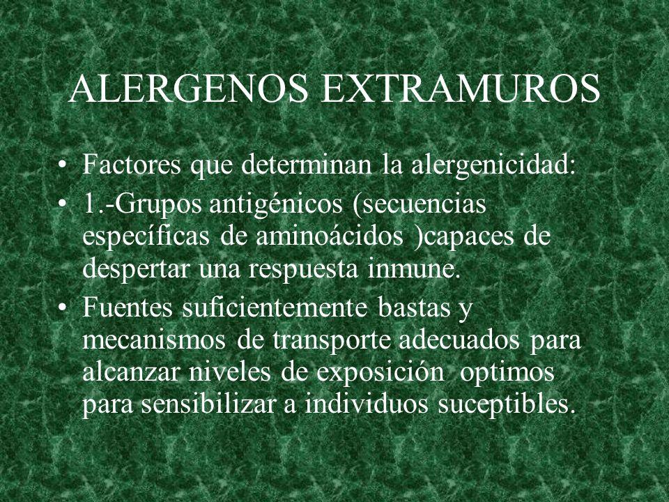 ALERGENOS EXTRAMUROS Factores que determinan la alergenicidad: 1.-Grupos antigénicos (secuencias específicas de aminoácidos )capaces de despertar una