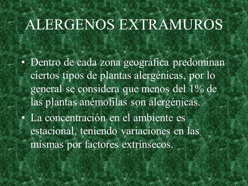 ALERGENOS EXTRAMUROS Dentro de cada zona geográfica predominan ciertos tipos de plantas alergénicas, por lo general se considera que menos del 1% de l