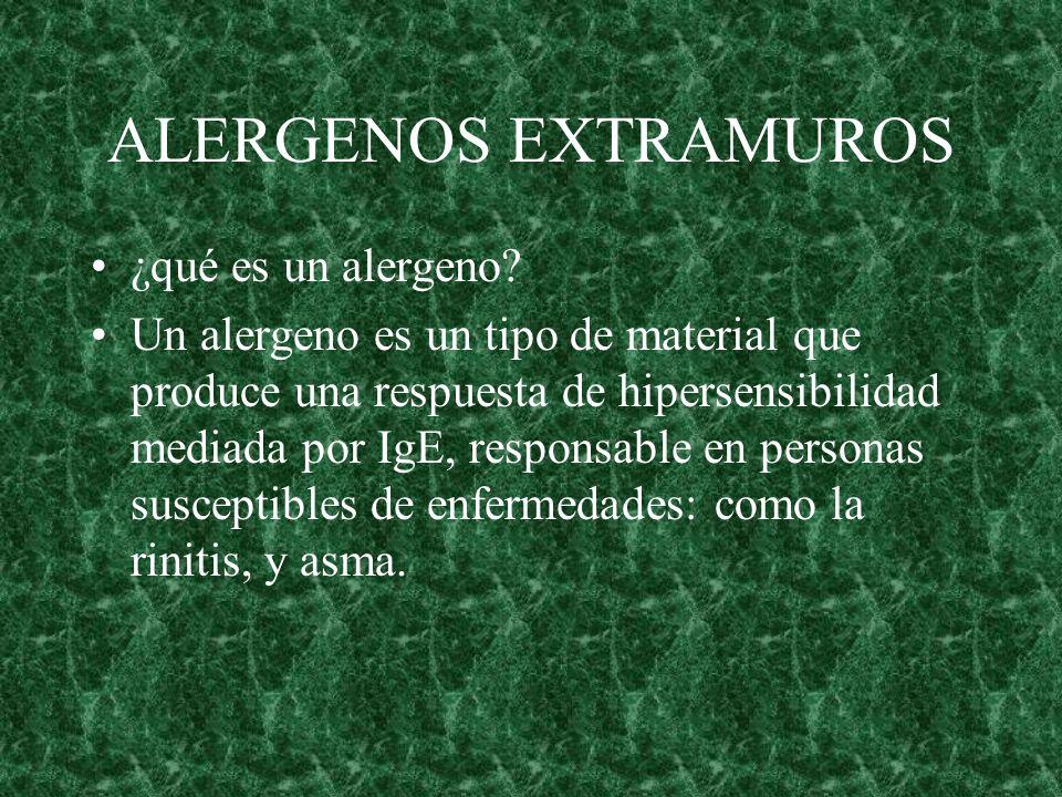 ALERGENOS EXTRAMUROS ¿qué es un alergeno? Un alergeno es un tipo de material que produce una respuesta de hipersensibilidad mediada por IgE, responsab